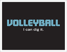 volleyball in black