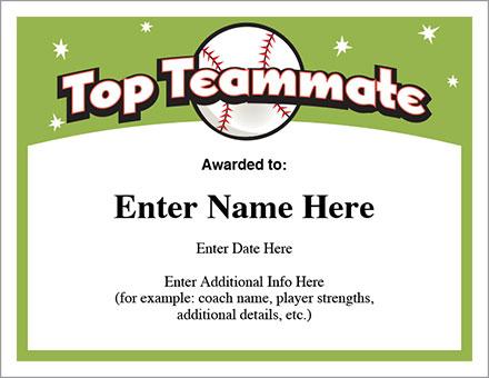 Top Teammate Baseball Award