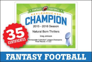Fantasy Football Awards image